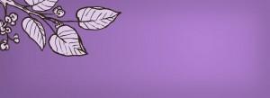Herba Flora Sampler purple background
